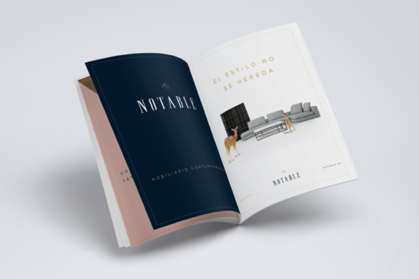 18-notable-branding-revista