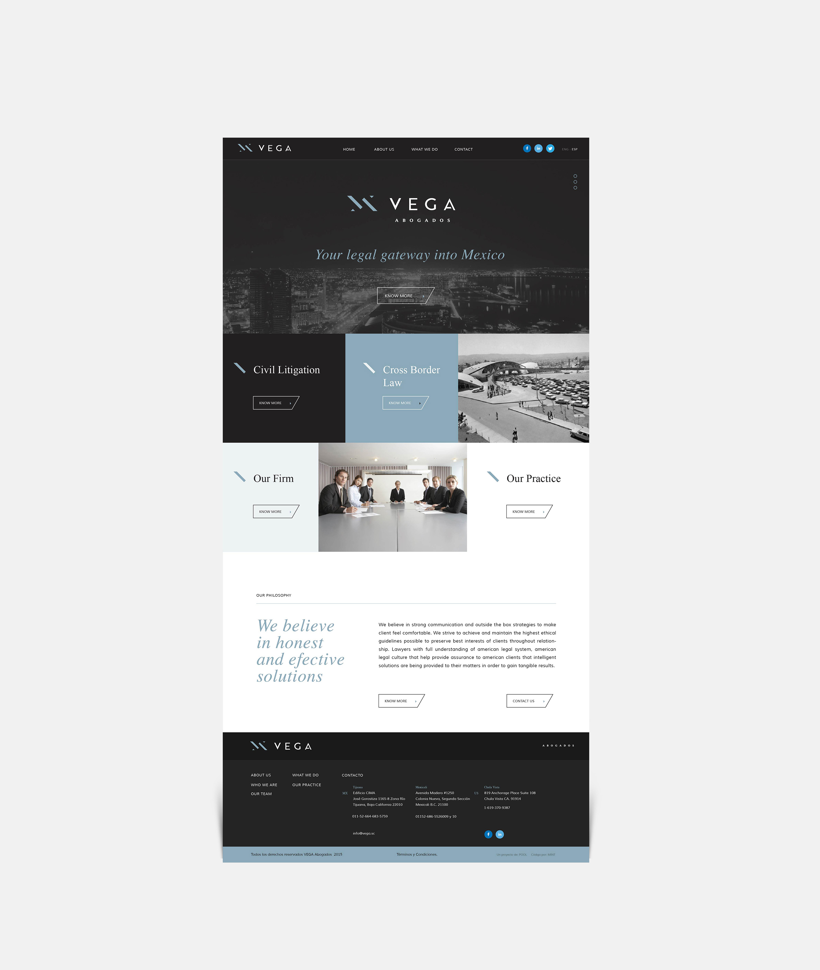 Vega-web-view